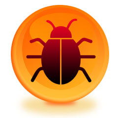 Bug Sweep In Your Home in Reading